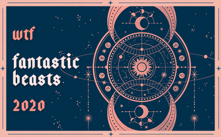 WTF Fantastic Beasts 2020
