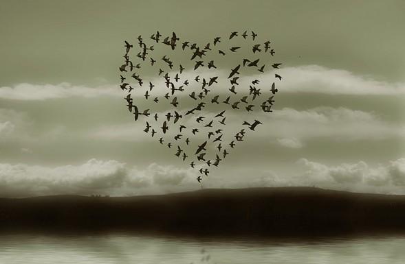 картинка люблю тебя как воздух видите