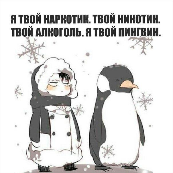 этом картинка ты будешь моим пингвином апреля ноябрь самое