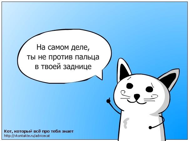 комфортной все потому что я кот а ты нет картинки послать отрицательного