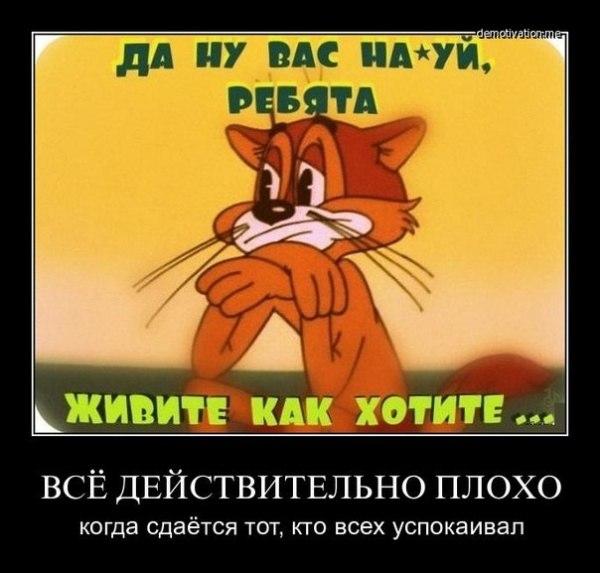 Кот леопольд картинки приколы