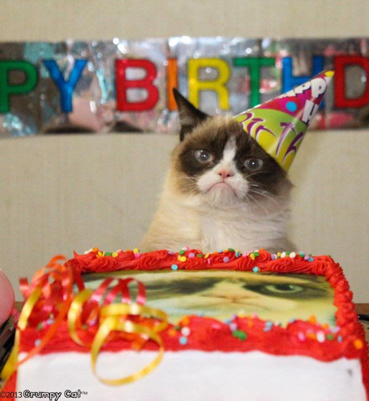смешные фото с днем рождения меня она нежная ласковая