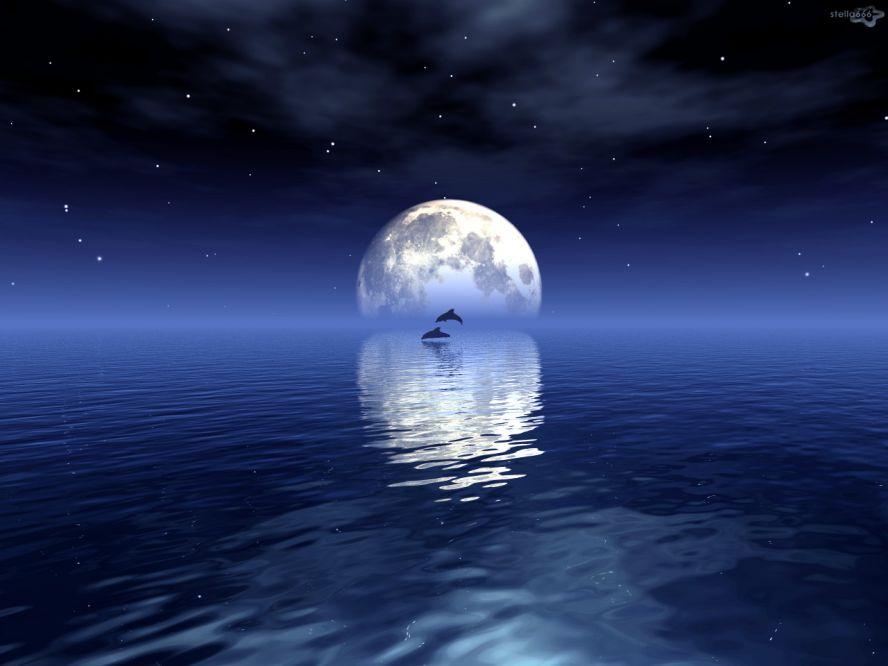Лунная соната открытка