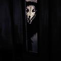 captn sourwolf