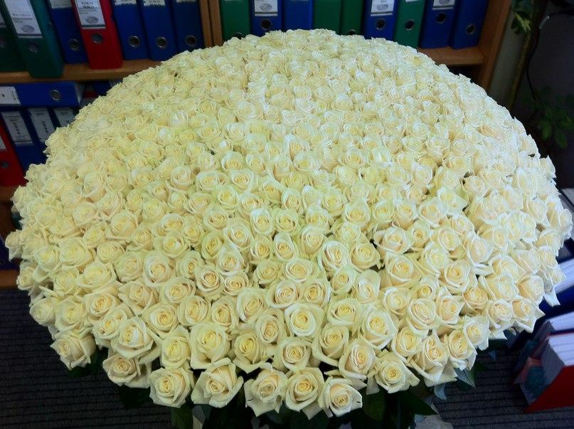 Огромный большой букет цветов в мире, букеты пионов