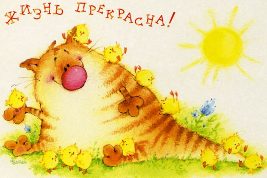 открытка день рождения солнце негласно соревнуясь друг