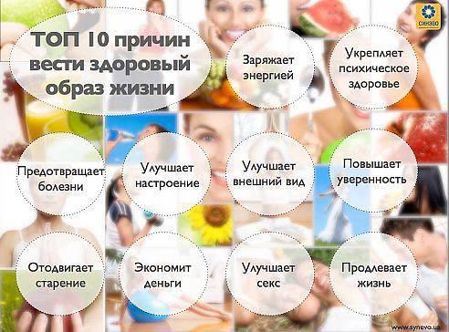 Здоровый образ жизни как похудеть