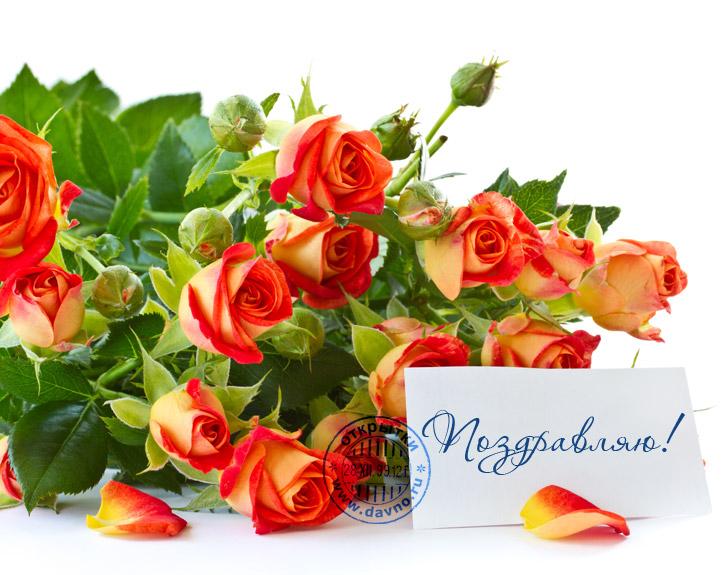 Покупка, цветы открытки для мужчин с днем рождения